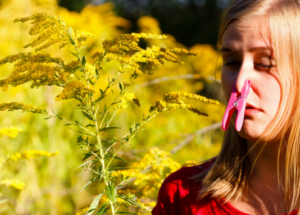 Spring Allergies and What Foods to Eat and Avoid When Combating it