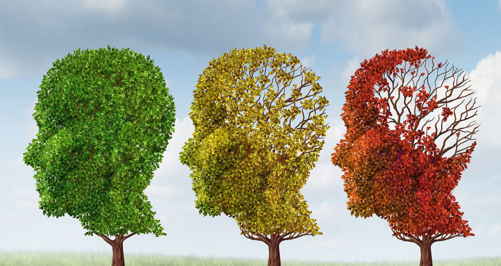 Were Doctors Treating Alzheimer's the Wrong Way? What New Study Claims
