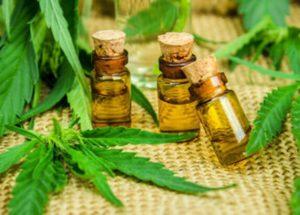 Here'sWhy People Who Use Cannabidiol Drop Traditional Medicine