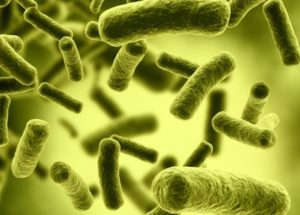 Alarming Case Of Flesh-Eating Bacteria Was Found At Myrtle Beach