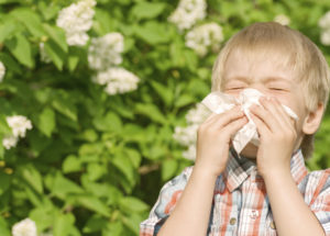 How To Handle Allergies With Natural Remedies