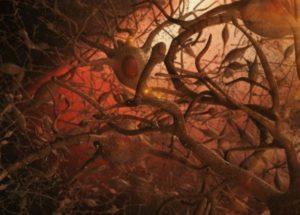 Memory Function Fully Restored Thanks to New Alzheimer' Treatment