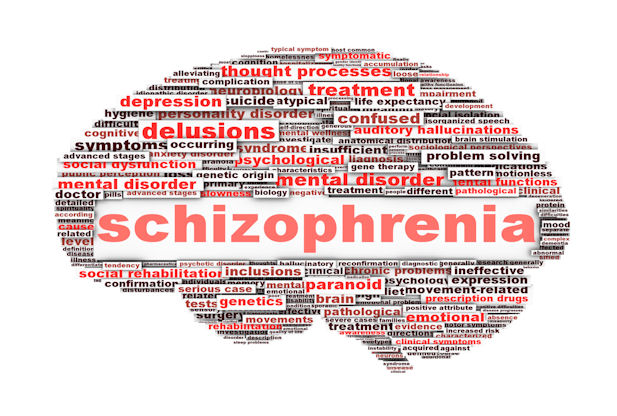 schizophrenia typography and information A person with schizophrenia experiences hallucinations and delusional thoughts and is unable to think rationally, communicate properly, make decisions or remember information.