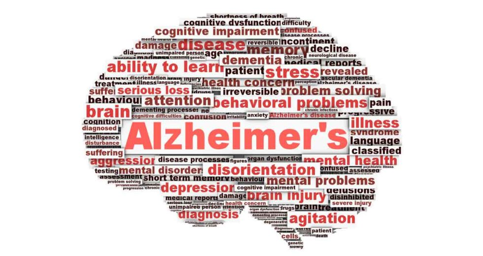 Scientists reverse Alzheimer's disease in mice