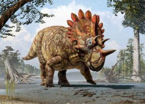 What Was the Reason for Dinosaurs' Frills and Horns?