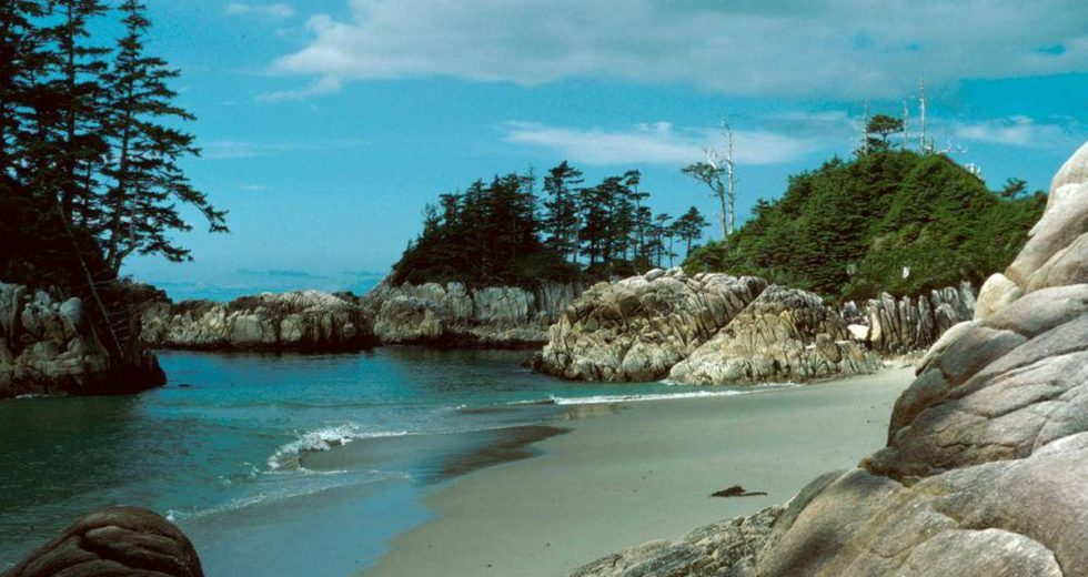 Ancient footprints found on Calvert Island confirmed as oldest on North America