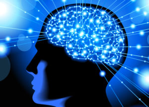 Reduce The Risks Of Alzheimer's Disease – 4 Foods For Healthy Brain And Memory