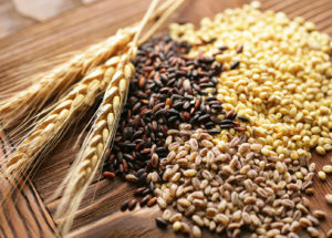 Whole Grain Cereals Reduce Risks Of Developing Cardiovascular Diseases And Increase Life Expectancy