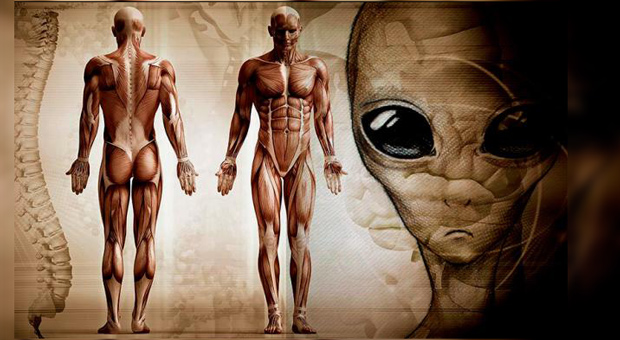 The Origins Of Life – Humans Are Not From Earth