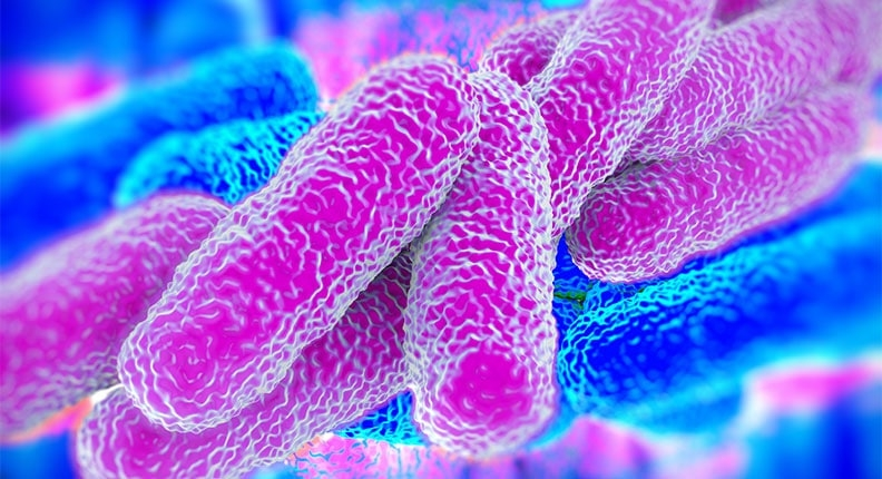 Legionnaires' cluster in the Bronx leaves 1 dead