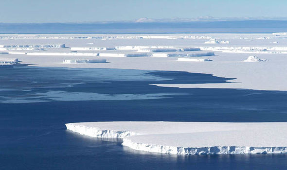 Study to probe risks of giant Antarctic glacier melting