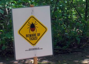 Tick Warning Sights Posted by the DND Walking Paths