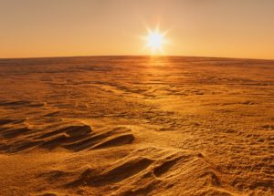 NASA's Chief Scientist Reveals The Truth About Life On Mars