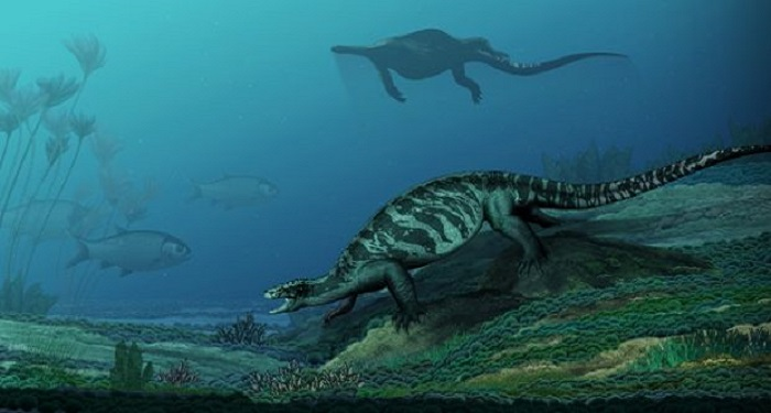 228 million-year-old turtle had no shell