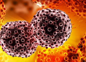 Cancer Cells Proliferation Halted By Blocking The NUAK2 Protein, Acoording To A Canadian Study