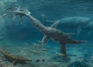 Fossilized Teeth Revealed More About The Jurassic Marine Reptiles