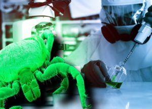 Insect-Borne Viruses To Help Plants and Animals, Run By DARPA, Deemed As Biowarfare By The World