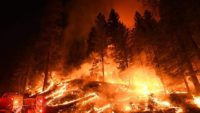 How Harmful Is Wildfire Smoke Compared to Car Exhaust: New Study Sheds Light