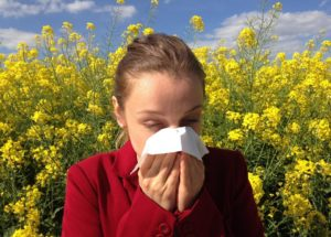 Allergies could be caused by the climate change