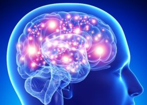 Researchers Uncovered New Details About Alzheimer's Disease