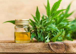 CBD and Weight Loss: What There Is To Know