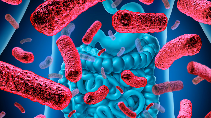 Diseases Believed to Be Non-Contagious Could Spread Through Gut Bacteria