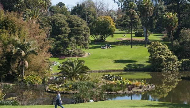 Living Near Green Spaces Boosts Mental Health And Wellbeing