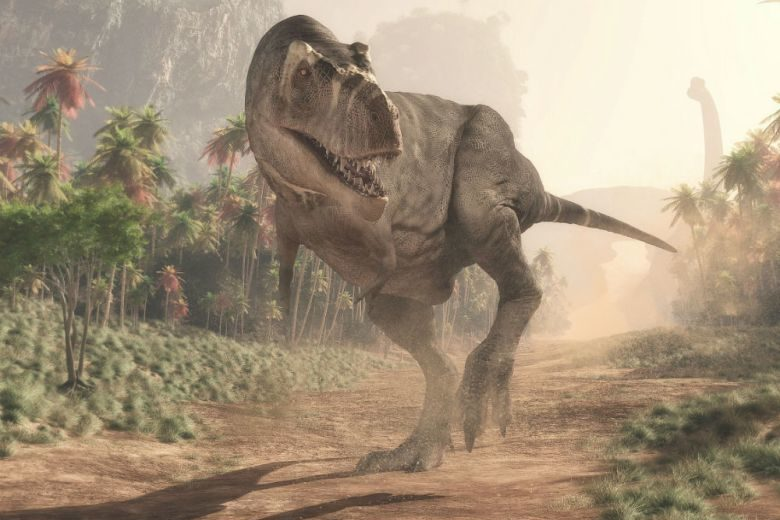 Paleontologists Unveiled Information About Young T-Rex