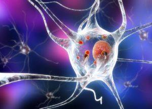 Translational Science Cancer Drug Might Cure Parkinson's Disease