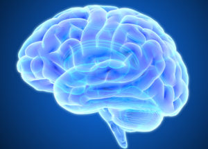 The Brain Fails at Pursuing a Goal Because Reward Fades When it Comes to Effort, New Research Revealed