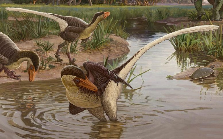 New Species of Feathered Raptor Found in New Mexico – 60 Million Years Ago