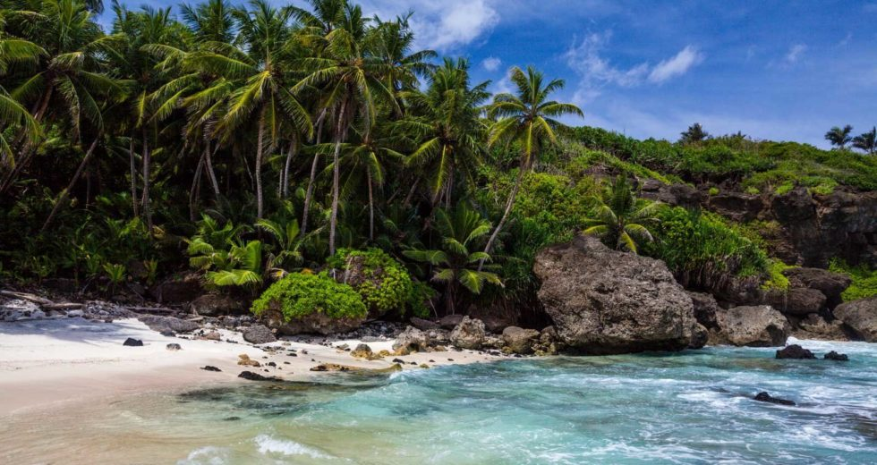 New Species On The Christmas Island To Change What We Know About Evolution