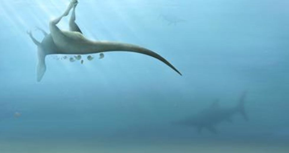 A New Species of Dinosaur Closely Related to the Tyrannosaurus Rex Recently Discovered in England