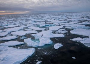 Climate Change Shrinks Arctic Sea Ice Alarmingly Much