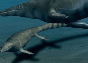 Paleontologists Discover New Genus of The Marine Predators Mosasaurus