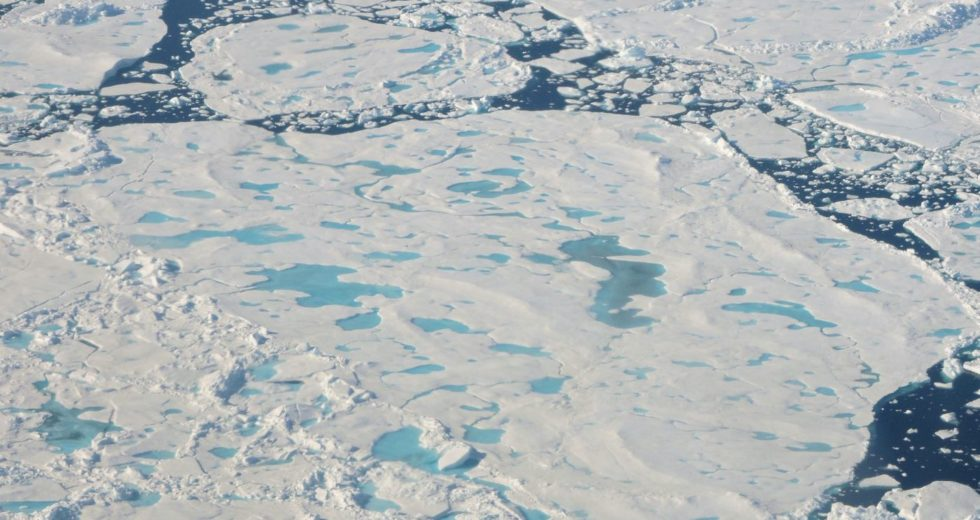 The Arctic Is in Danger and We Should Be Worried
