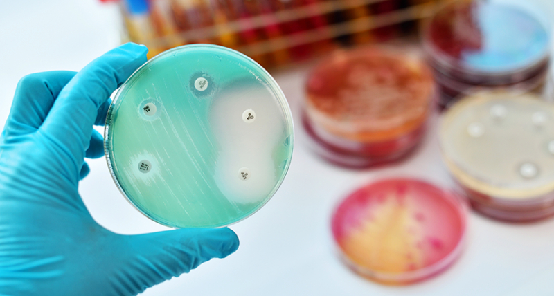 Newfound Way That Antibiotics Can Be Harmful for Babies
