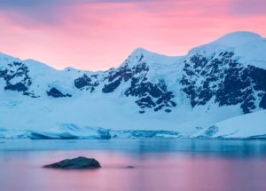 Antarctica's Ice Shelves Reveal More Life Than Expected – See The Strange Creatures Discovered