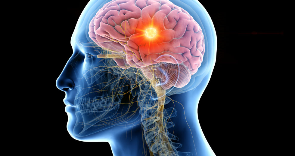 9 Tips For Boosting Memory Function