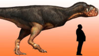 Scientists Discovered New Dinosaurs Size