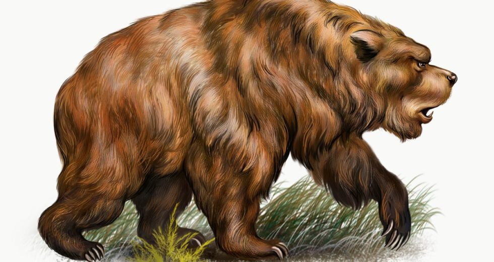 First In History! Ancient Bear DNA Sequenced From Cave Dirt!