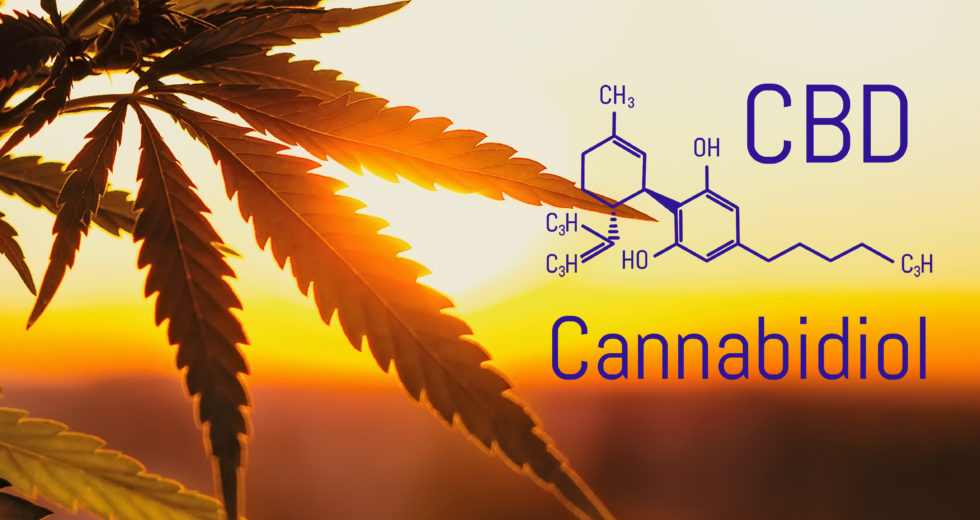 9 Tips To Maximize The Benefits Of CBD Products
