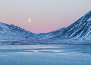 High-concentrations of Forever Chemicals Found in the Arctic: What to Expect