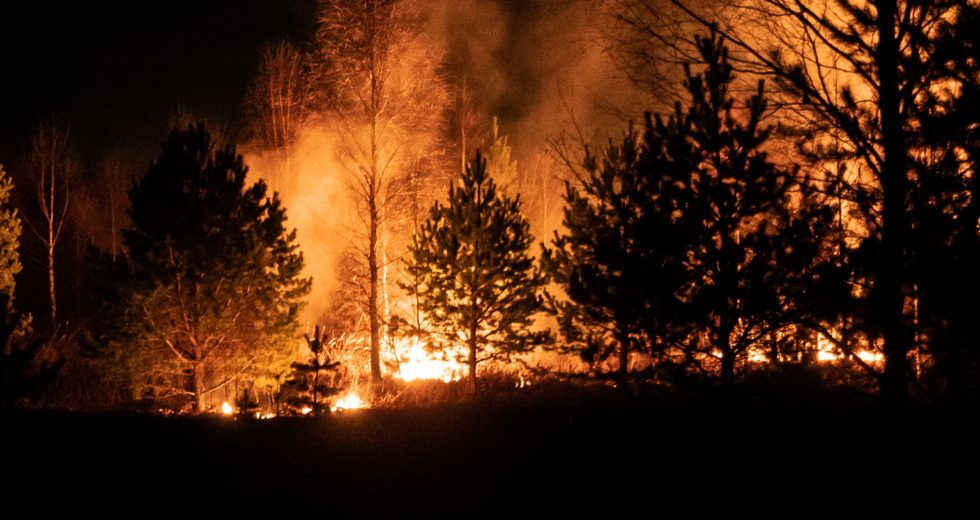 The Dixie Fire Becomes the Third Most Prevalent Wildfire in California's History