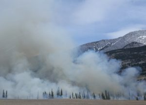 Smoke From Faraway Wildfires Can Still Damage Your Health, Study Shows