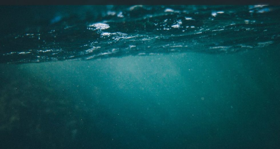 The Arctic Ecosystem Contains Microplastics, New Research Finds