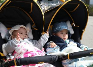 Best 9 Double Strollers For Twins And Triplets