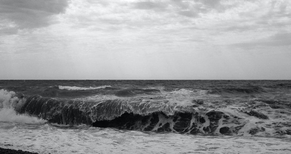 Massive Oil Slick Threatens the Black Sea: WWF's Report Details