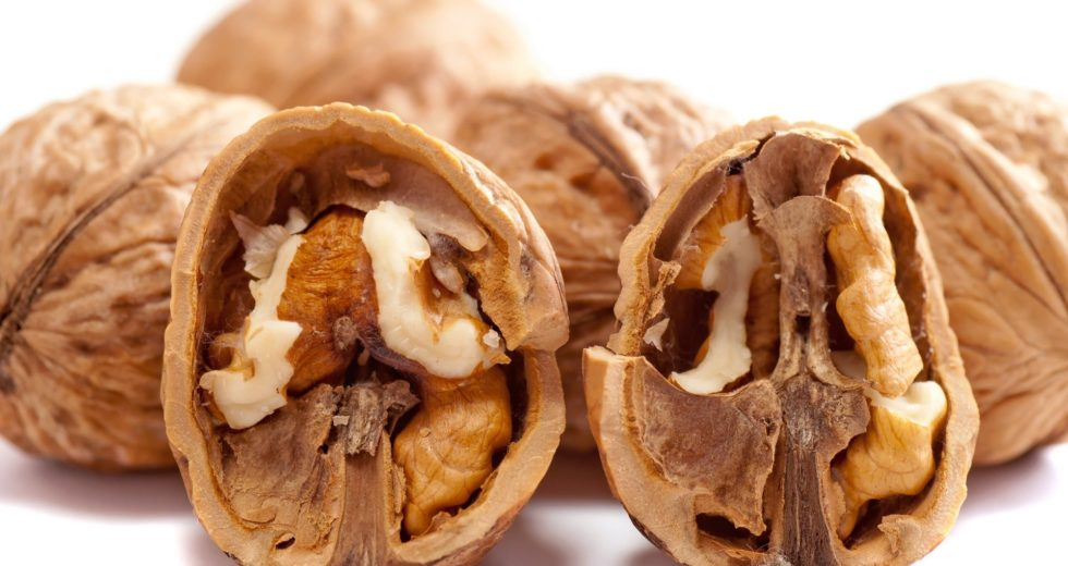 A Handful of Walnuts Per Day Can Protect You From Cardiovascular Disease And Significantly Lower Your Cholesterol Levels!