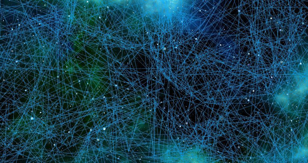 Researchers Discover New Brain Reward Circuitry